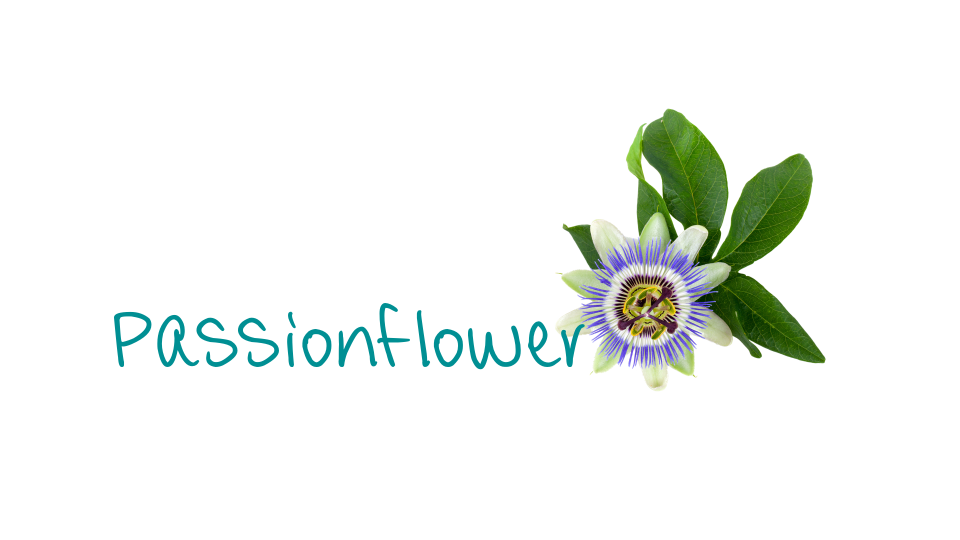 Passionsflower_header